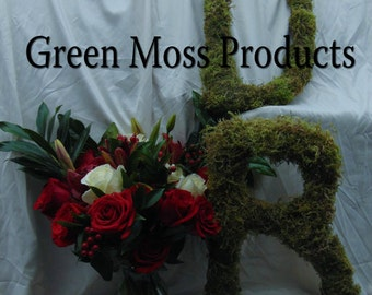 Moss Letters  Set of 2 (20 inches each) rustic wedding decorations Moss Covered Monogram Letters wedding letters  moss initials  moss logo