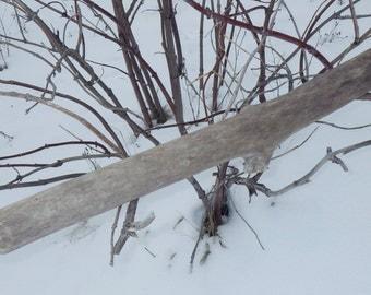 Driftwood, Decorative Driftwood, Driftwood Branch, River Driftwood