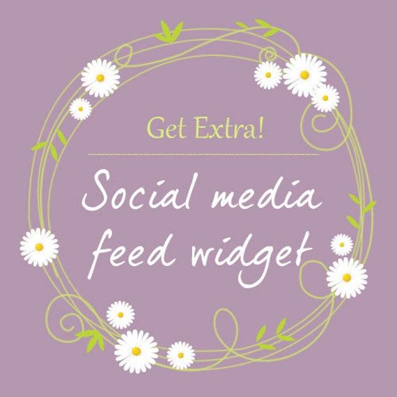 how to change social media widget wordpress