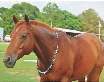 Custom Equine Riding Neck Rope for Tackless Riding