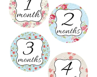 Milestone Stickers, Baby Month Stickers, Shabby Chic, , Monthly Baby Sticker, Baby Shower Gifts, Baby Month Sticker Girl, G52