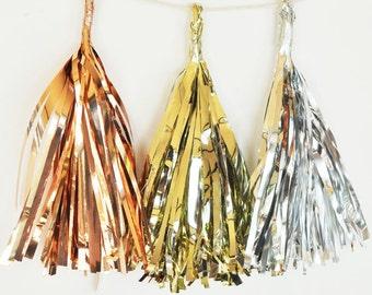 Set of 6 Metallic Tassel Garland Kit