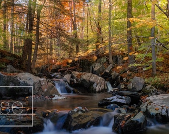 The Autumn River - Vermont Photo Art Print