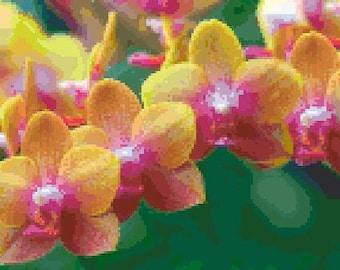 Orchids 2 Cross Stitch Chart