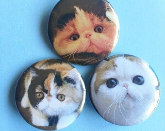Cat Pinback Buttons