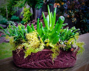 The Butter Boat Hypertufa Planter