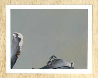 I'll Put You Down As A Soft Maybe 8 x 10 Art Print - Bird - Animal - Nature - Mincing Mockingbird - Giclee