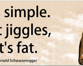 "Arnold Schwarzenegger ""If It Jiggles, It's Fat"" Inspiring 8 Inch Quote Magnet exercise sports workout body builder weight-loss diet #3340"