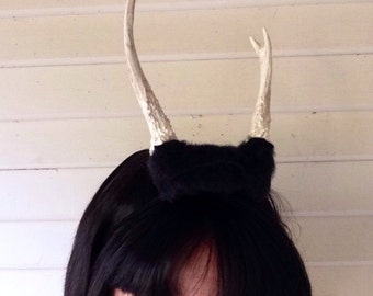 Small black antler headpiece