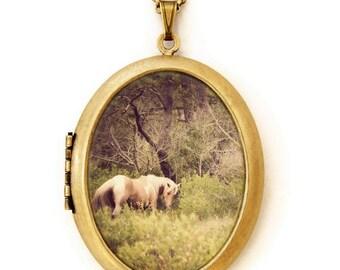 Horse Locket - Horse Whisperer - Magical Enchanted Fairytale Horse Photo Locket Necklace