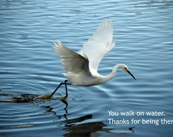 Walk on Water -- set of 3 greeting cards -- 5x7 -- with envelope -- inside blank