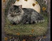 Cat Decor - Cat Art Print - Fine Art Cat Print - Cat Artwork - Maine Coon Cat - Maine Coon Painting - Cat Lover Gift - Cat Lover Art - Decor