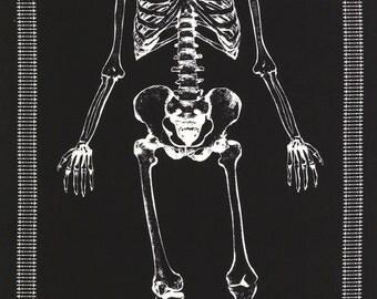 Skeleton Glow in the Dark Skull Black Timeless Treasures Fabric Panel