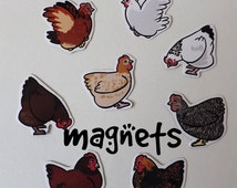 Cute  Chicken Magnets! Pack of 8