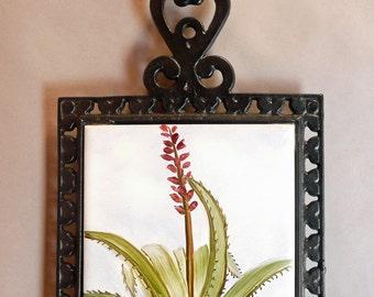 Hand Painted Cactus Cast Iron Trivet