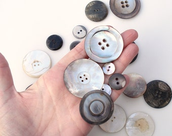 Vintage Carved Shell Buttons: Lot of 32 Large and Small Buttons