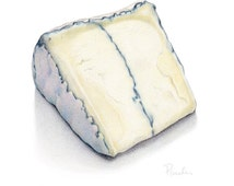 Humboldt Fog Blue Cheese / Cheese PRINT / Cheese Drawing / Cheese Art / Kitchen Art