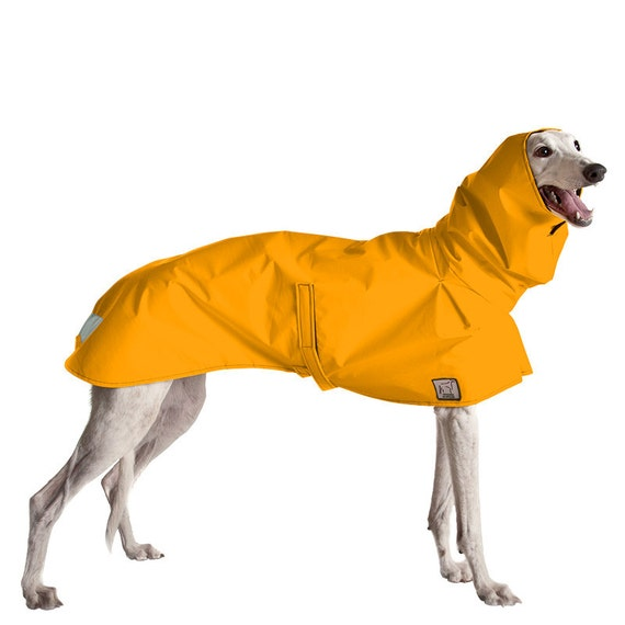 GREYHOUND Rain Coat, Dog Coat, Dog Raincoat, Rain Slicker
