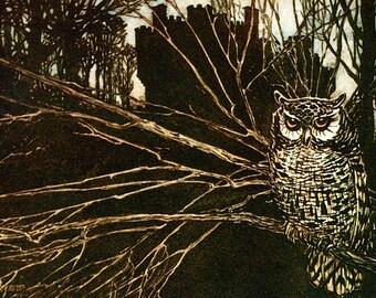 Screech Owl Card - Brothers Grimm Fairy Tale - Arthur Rackham
