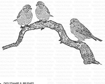 Birds on a Branch Clip Art - Digital Stamp and Brush - INSTANT DOWNLOAD - for Collage, Scrapping, Journaling, Cards, Crafts, Invites, More