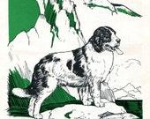 Newfoundland Dog Illustration by Diana Thorne Vintage Children's Book Picture