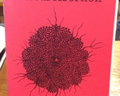 Herbal Abortion The Fruit of the Tree of Knowledge Zine Pamphlet