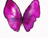 "dark pink butterfly ORIGINAL watercolour PAINTING 8 x 6 """