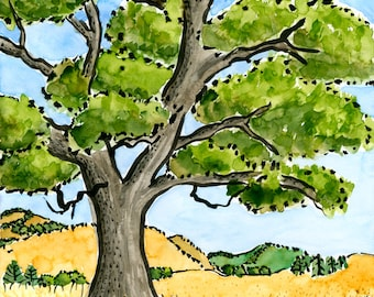 02-110. oak tree print - ink and watercolor painting