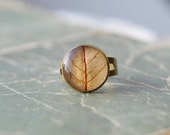 Real leaf resin ring -  Autumn yellow handmade jewelry - nature beauty preserved leaf