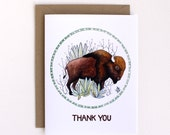 Thank You Card - Bison Card - Thanks Greeting Card - Illustration Card
