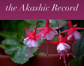 REINCARNATION: Past Lives and the Akashic Record- PDF file