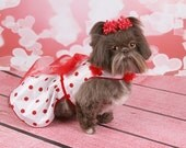 VALENTINE'S DAY -  White Taffeta with Red Polka Dots Dog Party Dress