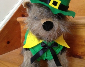 Saint Patrick's day costume by FiercePetFashion