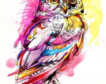 "Neon Northern Pygmy Owl Print- 8.5"" x 11"" Print"