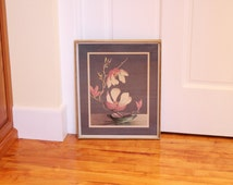 Steel and Magnolias ... Vintage Framed Botanical Print - White and Pink Magnolias, 1940s or 1950s