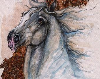 Andalusian horse original watercolor painting.
