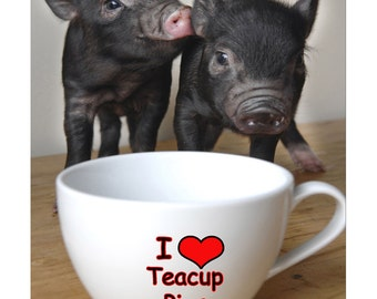 Micro Pigs - I Love Teacup Pigs Mouse Mat Mouse Pad