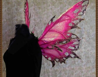 Iridescent Pink/Black/Gold Fairy Wings for Adults**FREE SHIPPING**Costume/Cosplay/Photo shoots/Weddings/Renn Faires/Masquerade