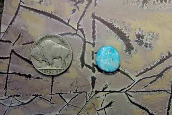 Royston Turquoise Cabochon Nevada Natural Handcut