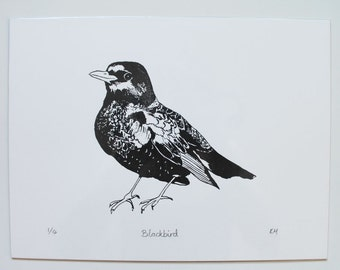 Limited edition blackbird screenprint in black and white
