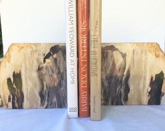 Stone Petrified Wood Bookends