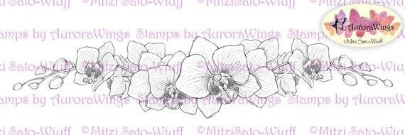 Digital Stamp - Instant Download - Orchid Border - digistamp - Elegant Floral Border - Line Art for Cards & Crafts by Mitzi Sato-Wiuff
