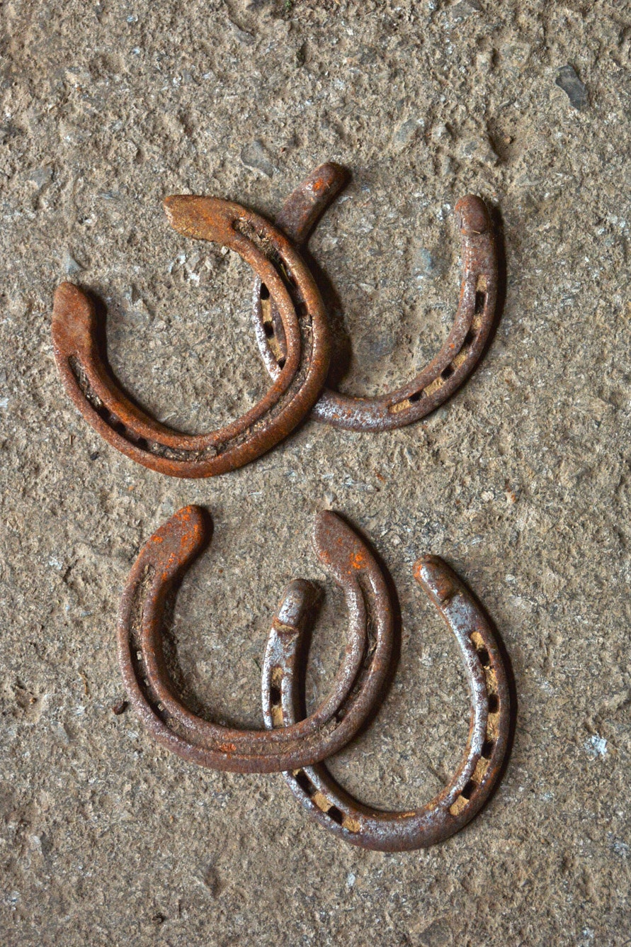 Used horseshoes set of 4 real horseshoes diy craft for Where to buy used horseshoes