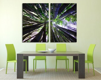 Bamboo Trees - 2 Panel Split Canvas Print, Diptych. Nature forest photography for home or office room wall decor & interior design.