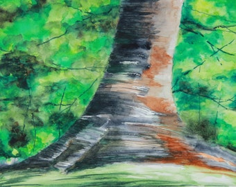 Tree Trunk Painting