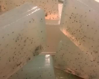 Amazon Pequi Sugar Soap Scrub