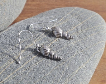Silver Shell Earrings, fine silver, cornish shell, cornish earrings, cornish jewellery
