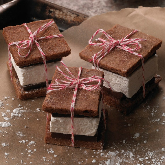 Handmade S'mores with homemade graham crackers, chocolate and ...