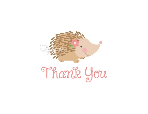 Porcupine Hedgehog Printed Thank You Cards Folded by HartPaper