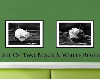 Photo set of two black and white roses